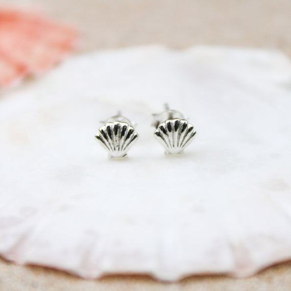 Silver sea shell earrings
