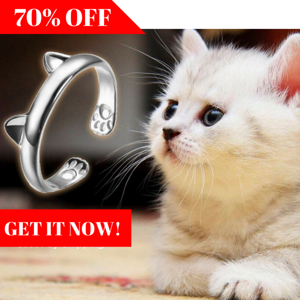 Lovely Silver Cat Ring <2016 LIMITED EDITION> - Special