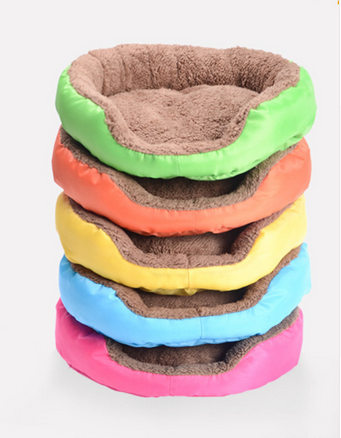 Candy Colored Pet Bed