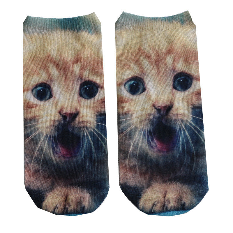 Cute Cat Socks - Special