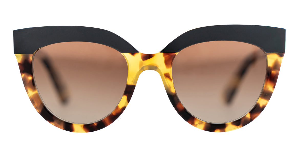 Bask Echo Havana Tort Polarised