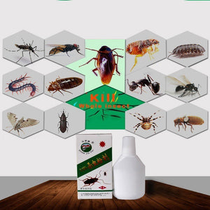 Super Cash Cockroaches Bed Bug Killer Dust Colbug Drog Mites Insecticide Kill Ants Spider Flea Bait Repellent