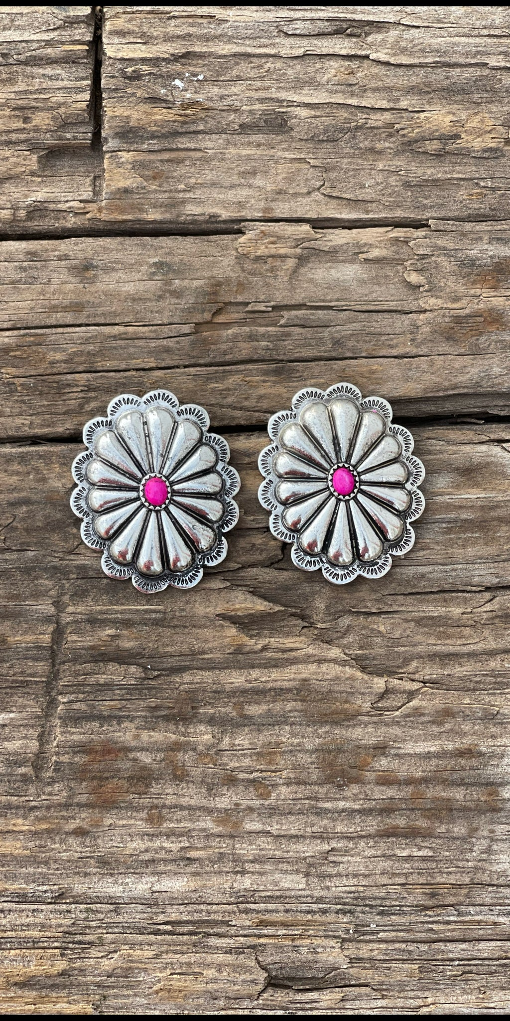 Perfectly Paired Silver Concho Post Back Earrings