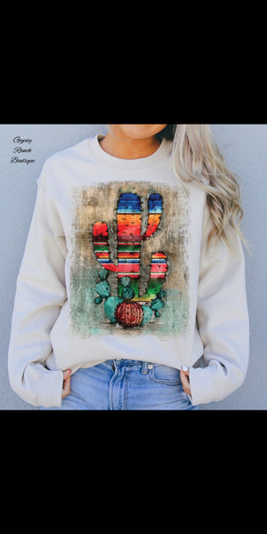 Serape Sky Cactus Sweatshirt Top  - Also in Plus Size