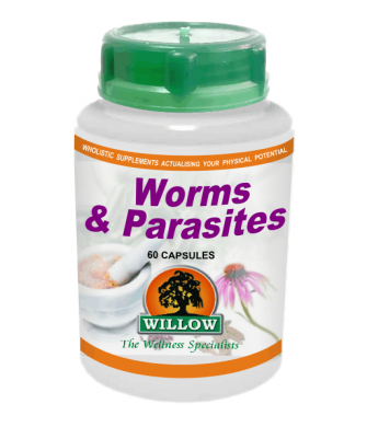 Willow - Worms & Parasites 60s