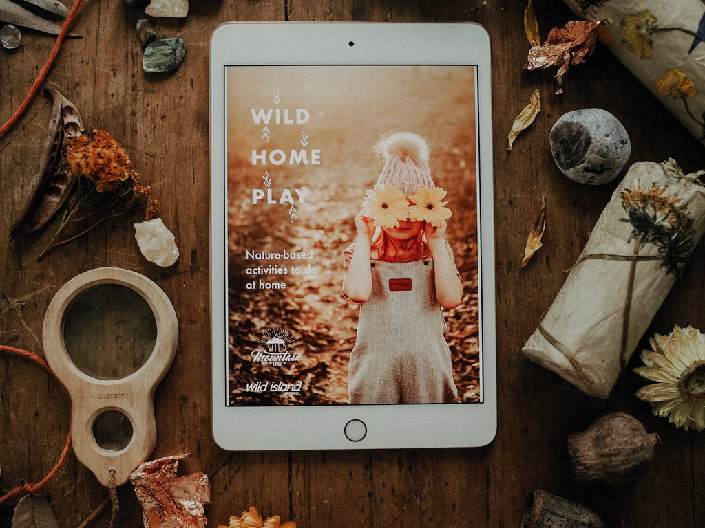 Wild Home Play - Free Ebook