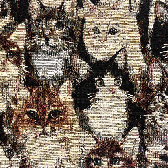 Printed Tapestry - Cats - Sold by Half Metre
