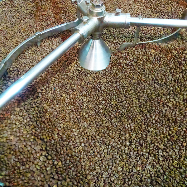 freshly roasted coffee beans novello