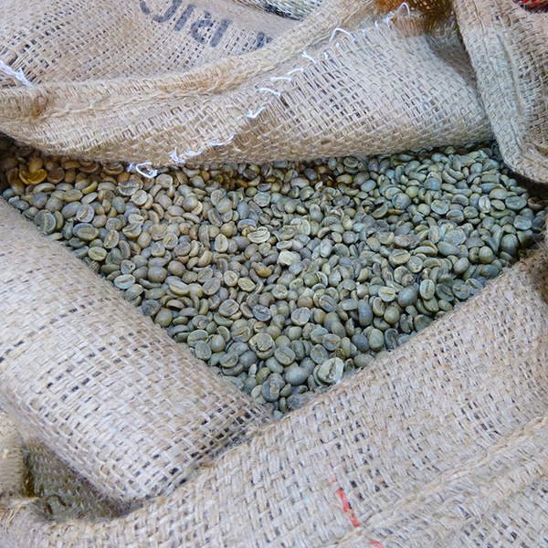 novello coffee beans sack