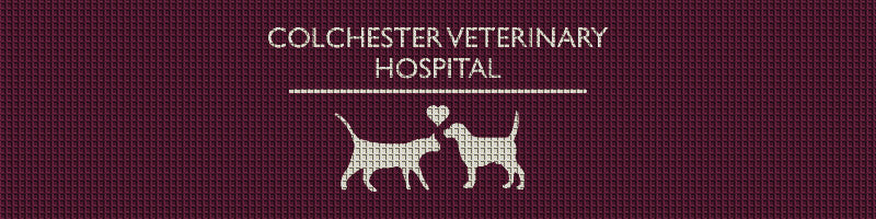 Colchester Veterinary Hospital 3 X 12 Waterhog Impressions - The Personalized Doormats Company