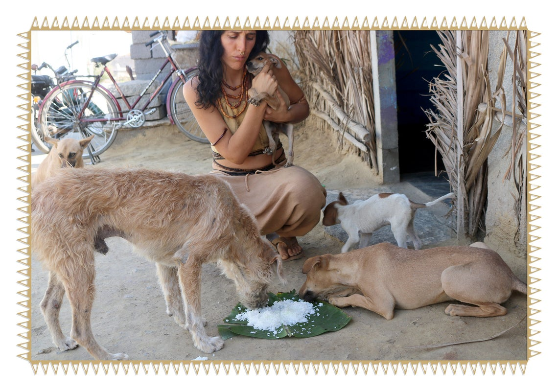 Help Spay A Street Dog And Recieve A Surprise Item