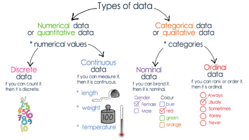 Part 1 - Further Mathematics - Unit 3 - DATA ANALYSIS - Types of data