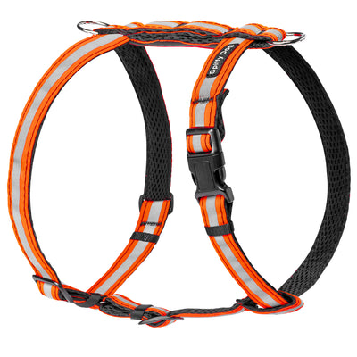 Air Harness