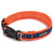 Blue Orange Air Collar
