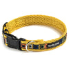 Yellow Paws Air Collar