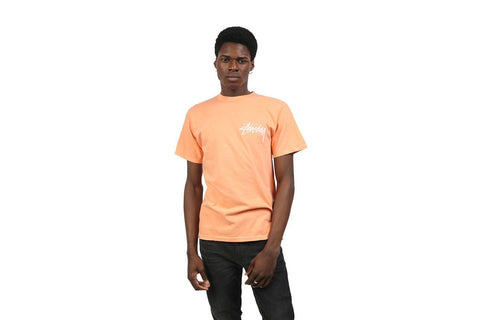 STOCK PIG DYED TEE - 1904360 MENS SOFTGOODS STUSSY