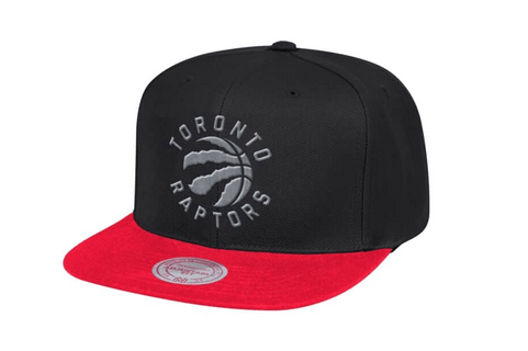 NBA RAPTORS TWO TONE SNAPBACK