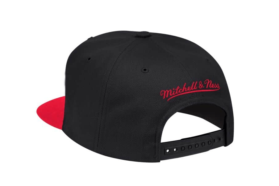 NBA RAPTORS TWO TONE SNAPBACK HATS MITCHELL & NESS