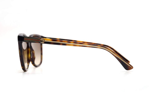 GG0376S-002 54 WOMAN ACETATE