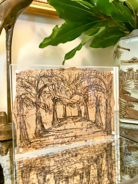 Avenue of Oaks in 5x7 Lucite