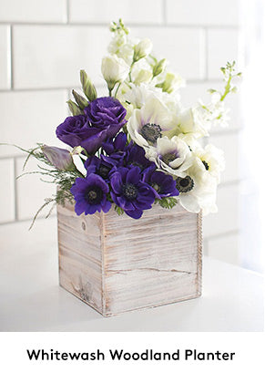 Whitewash Wooden Planter Rustic Centerpieces