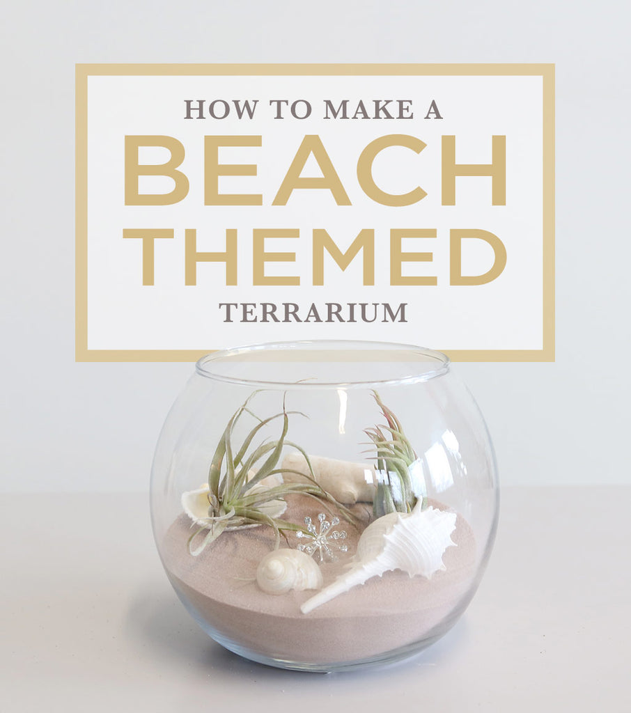 How To Make A Beach Themed Terrarium | DIY Wedding Centerpiece ...