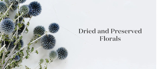 Dried Flowers, Preserved Florals, Dried Filler Flowers