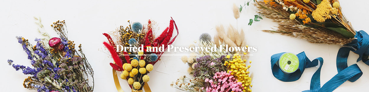 Preserved Flowers | Dried Florals | Natural Flowers