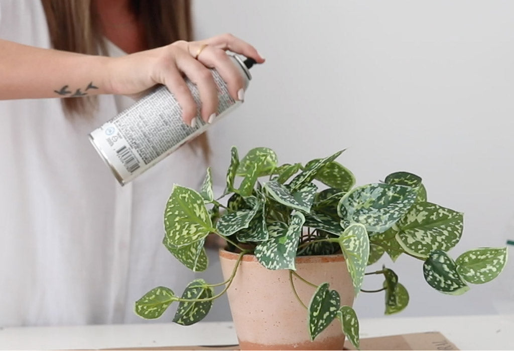 How to Stop Fake Plants from Fading