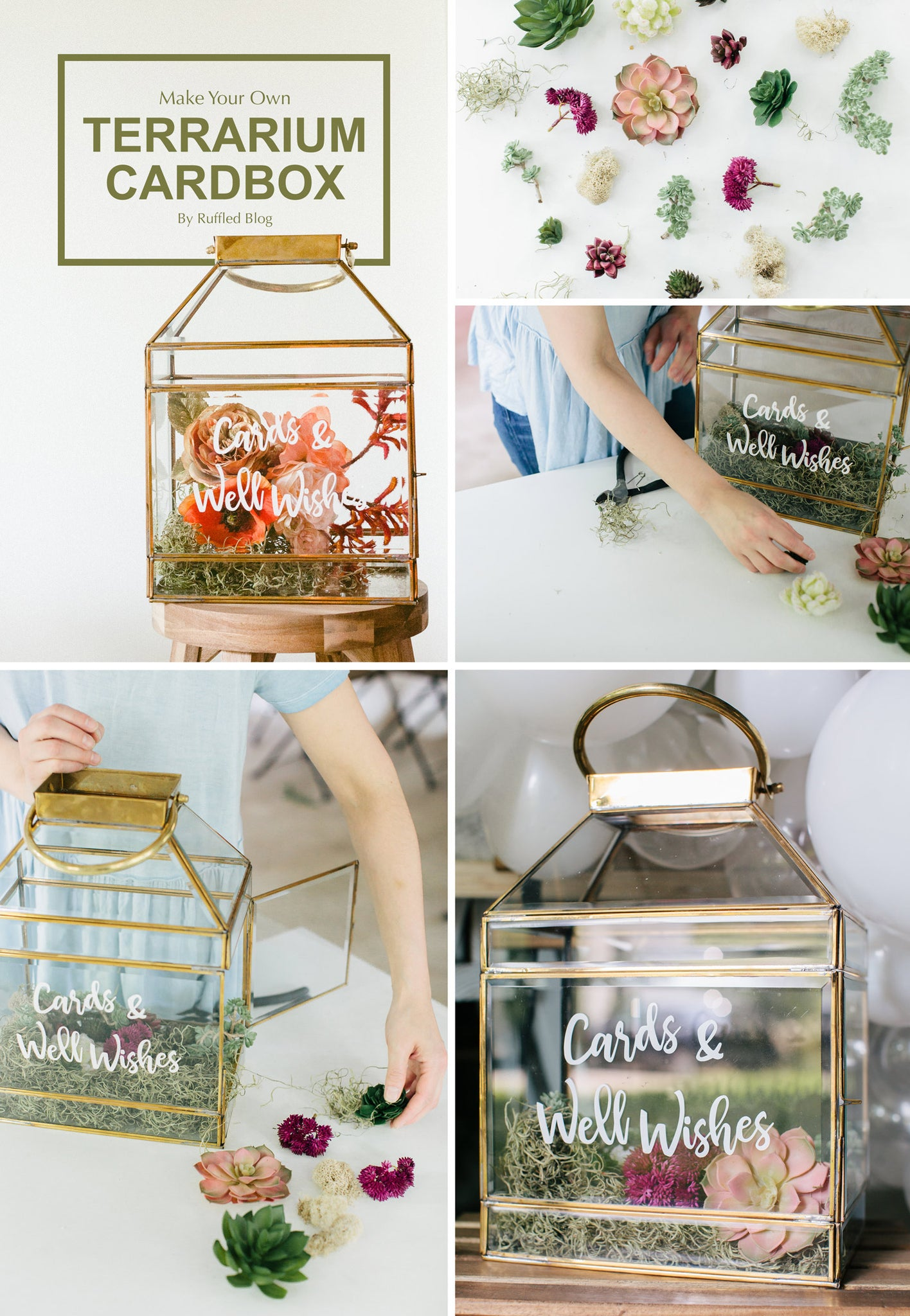 How To Make A Terrarium Cardbox