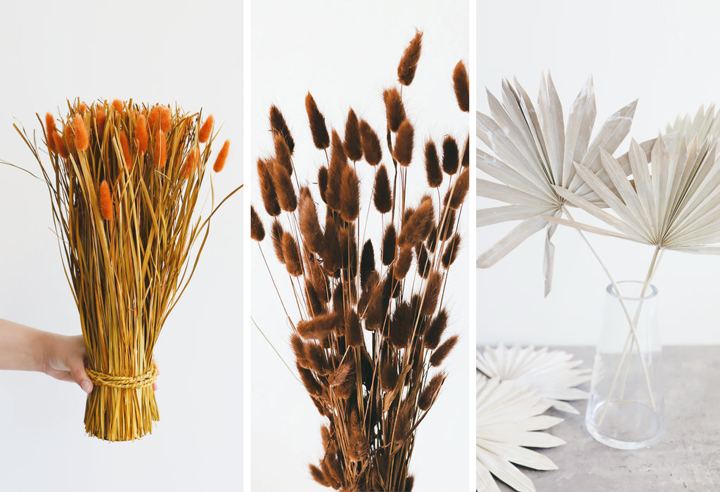 cat tails, brown and chocolate bunny tail, whitewashed sun palm