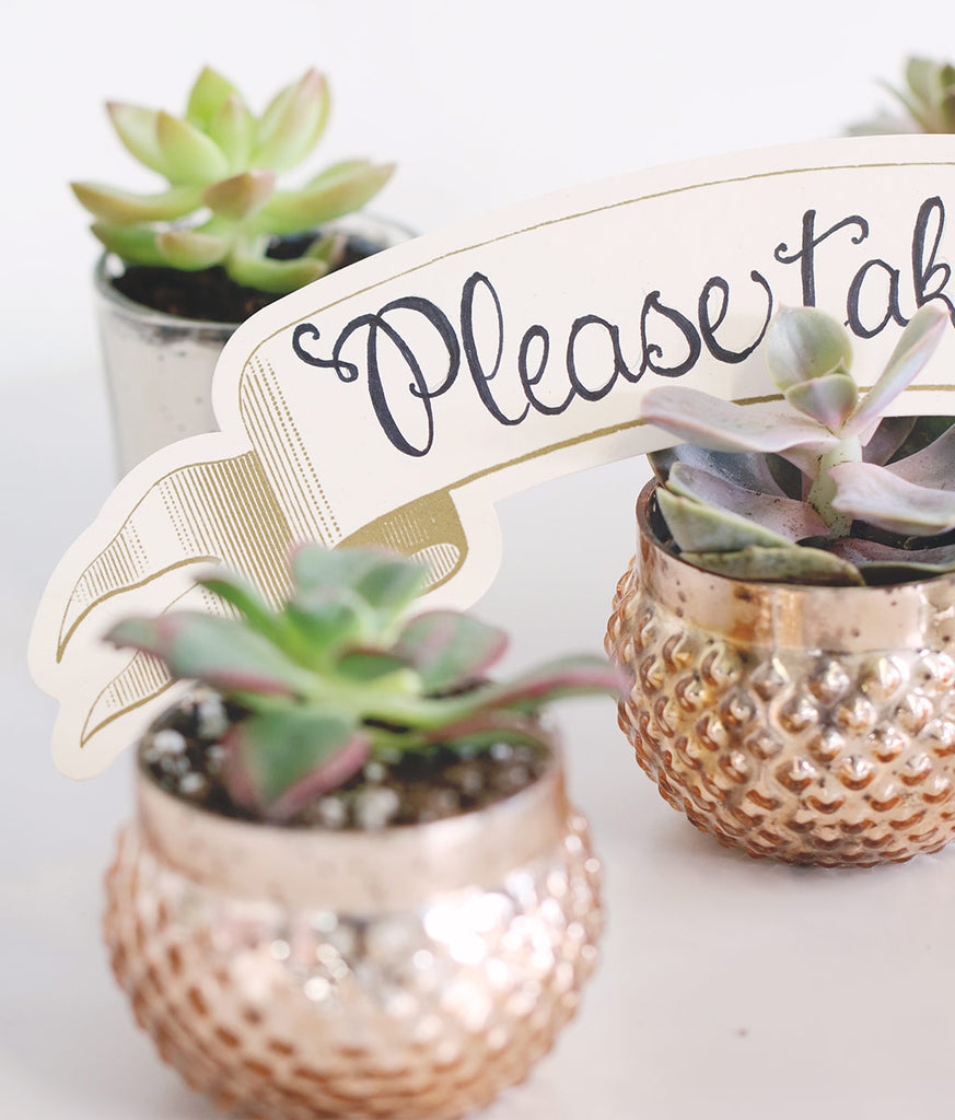 Get The Look: Succulent Wedding Favors | DIY Wedding Favors | DIY ...