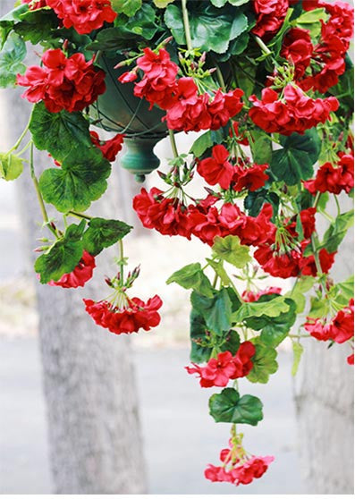 Artificial outdoor flowers