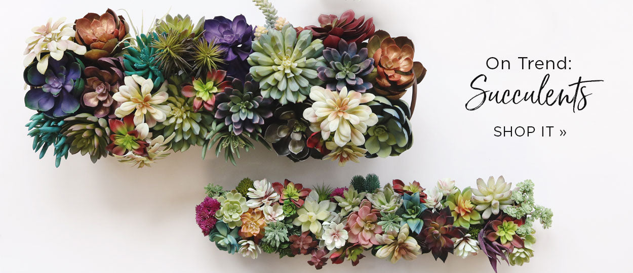 succulents on trend