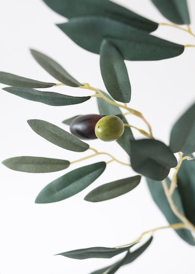 Fake Olives on Olive Leaf Branch