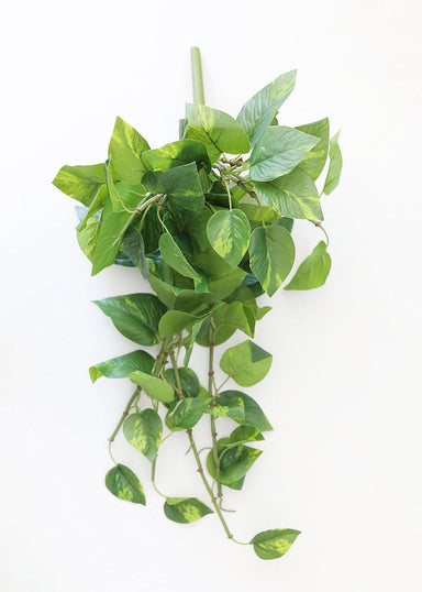 Faux Greenery Real Touch Pothos Plant