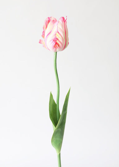 Artificial Spring Flowers Pink Cream Parrot Tulip