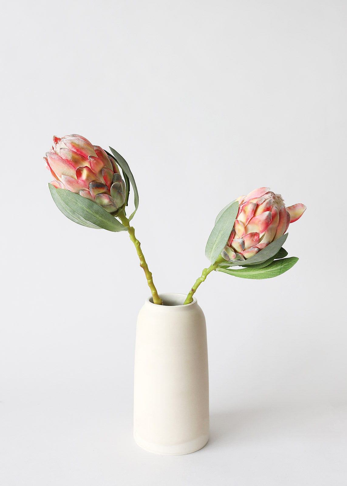 Artificial Coral Protea Flowers in Vase
