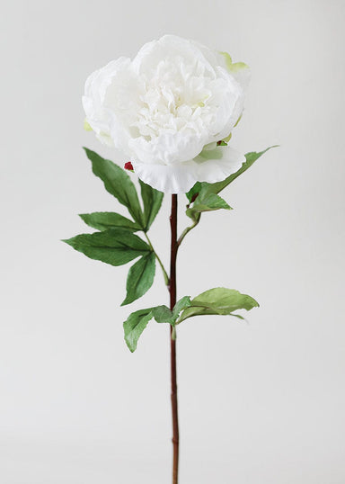 Real Touch Cream Peony Stem