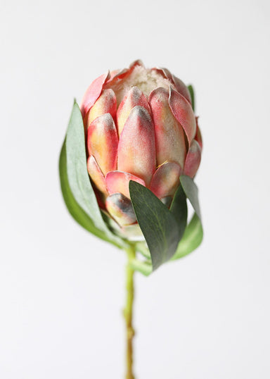 Artificial Orange Pink Protea Flower