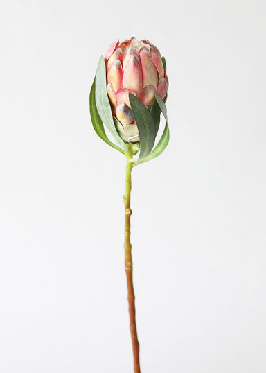 Artificial Tropical Flowers Protea Bud in Orange