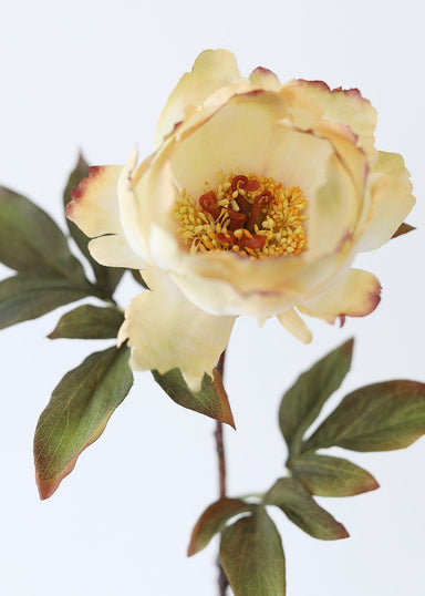 Fall Faux Flowers Peony in Vanilla Ivory