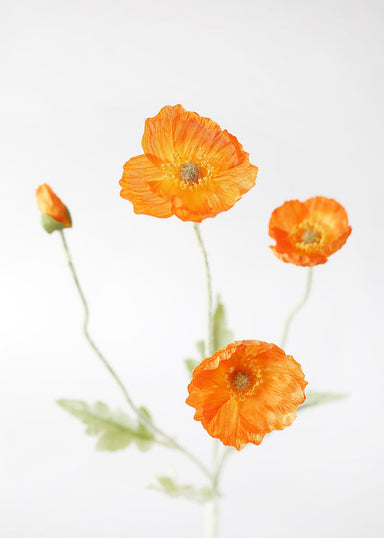 Orange Fake Poppy Stem