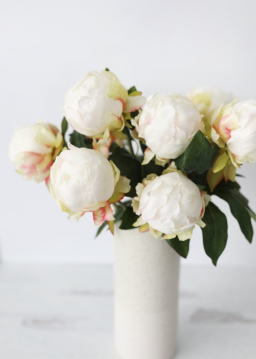 Artificial Cream Peonies in Vase