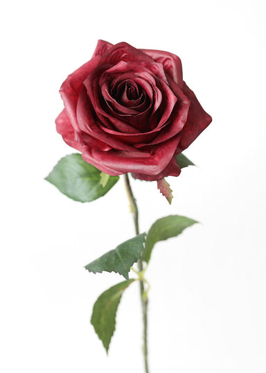 Burgundy Silk Open Rose