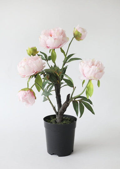 Fake Potted Flowers Pink Peony Plant in Pot