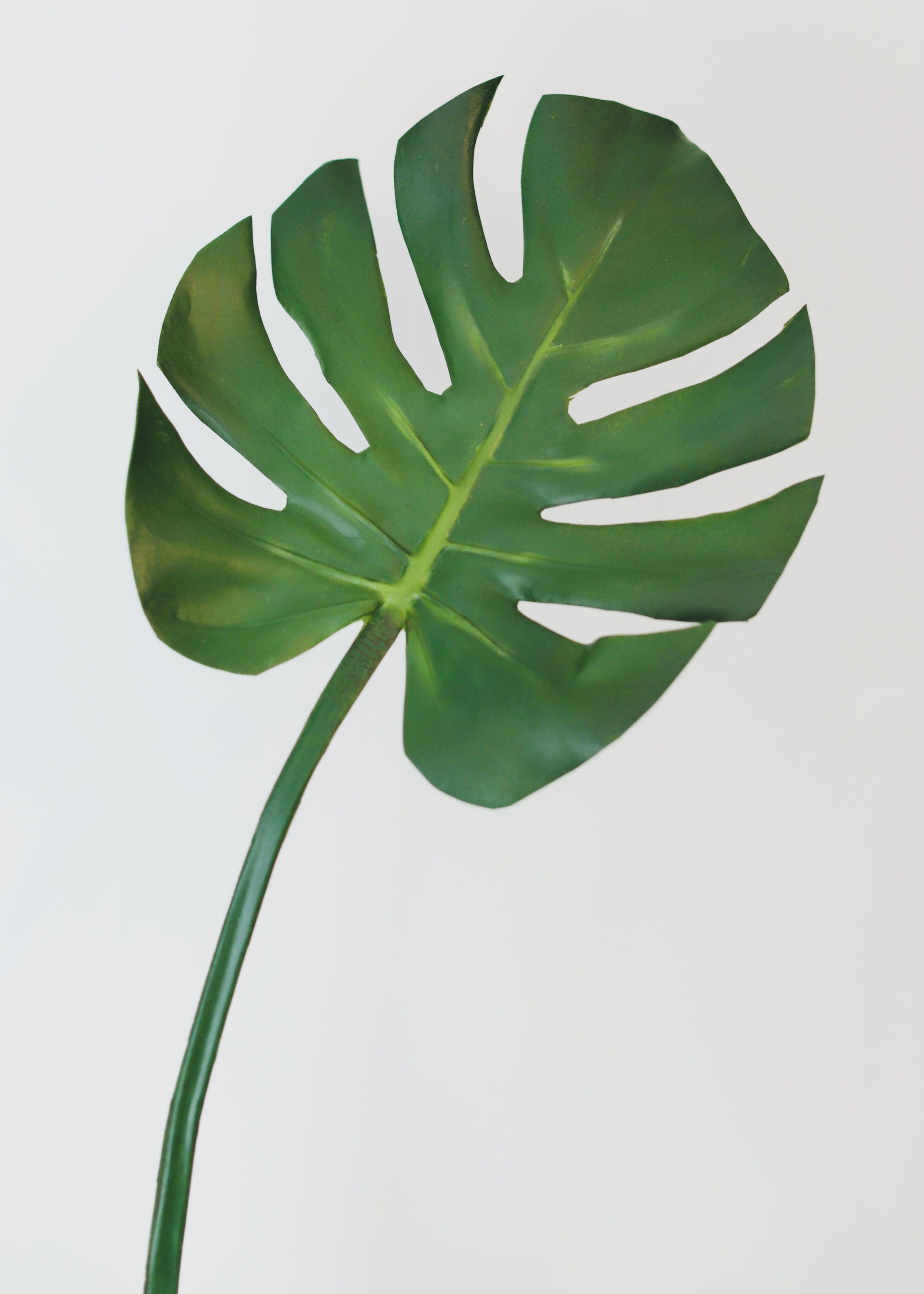 "Real Touch Monstera Leaf - 29"" Tall"
