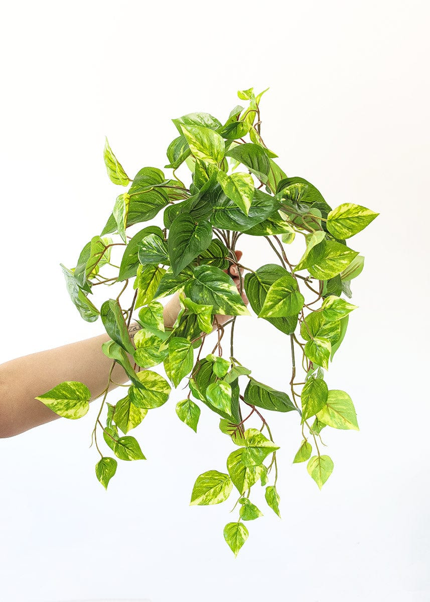 outdoor faux pothos plant