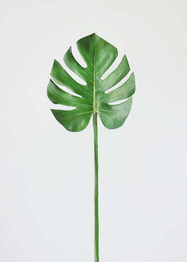 Fake Tropical Monstera Leaf