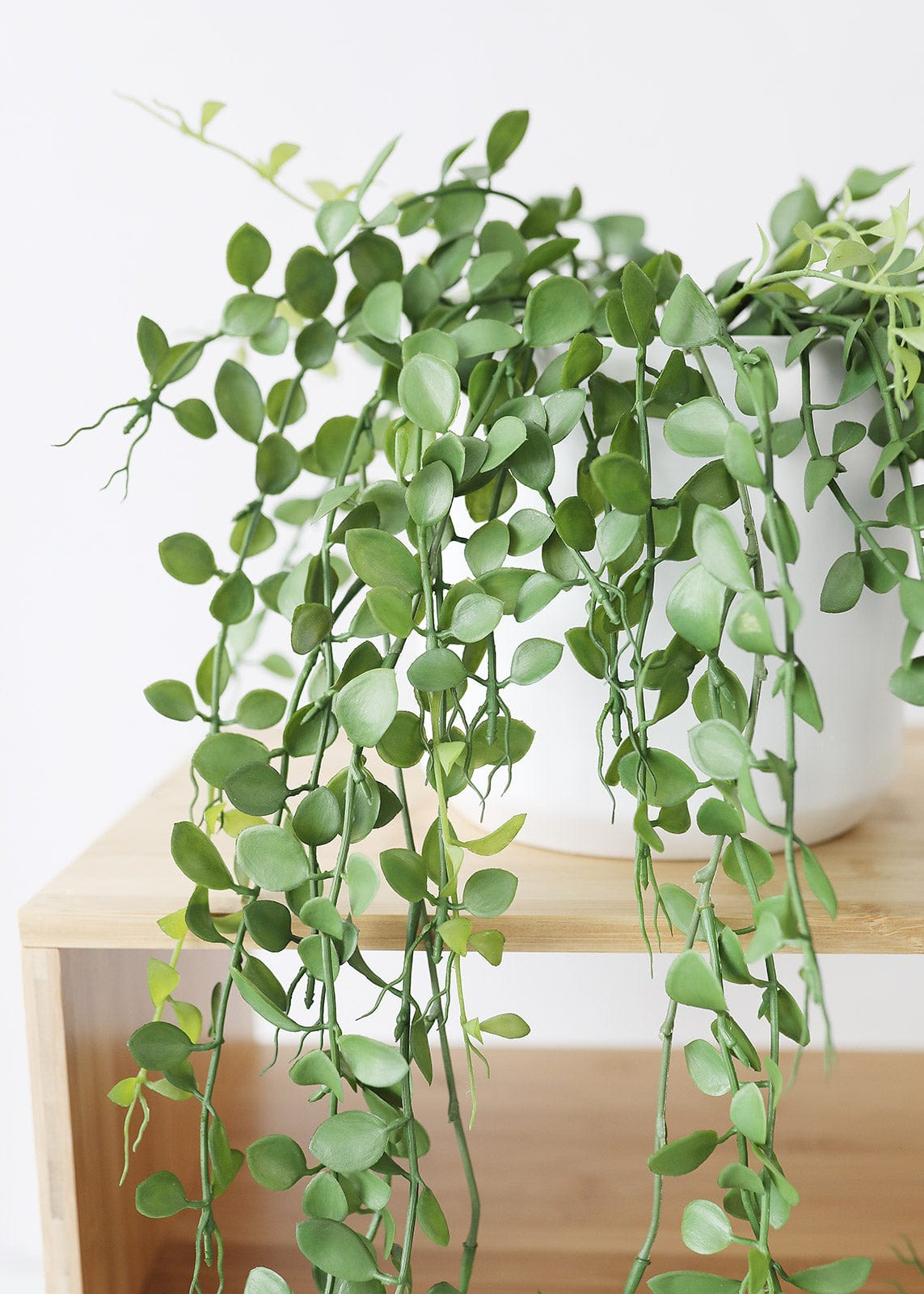 Artificial Button Leaf Hanging Plant